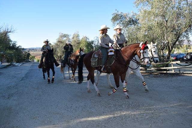Riverside Sheriff's Mounted Posse wearing Horse Leg Lights